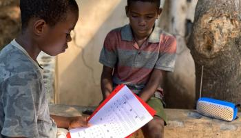 A 1st grader, and his brother read a solar-powered radio and comprehension worksheet